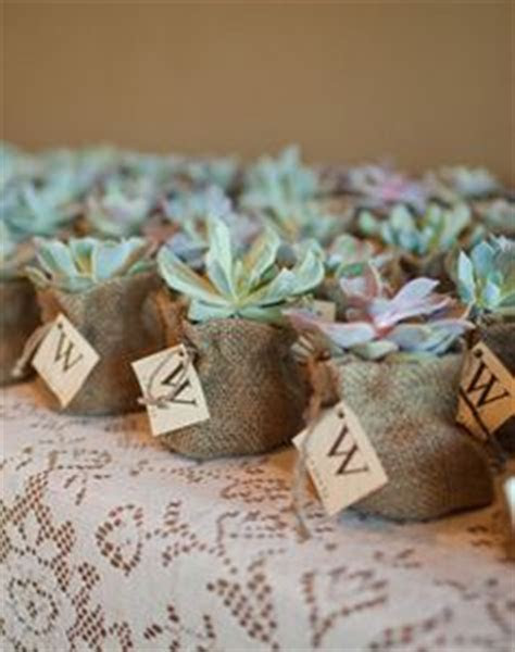 1000  images about Succulent wedding favor on Pinterest