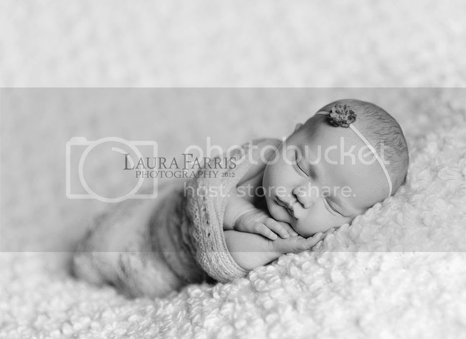 boise idaho newborn photography
