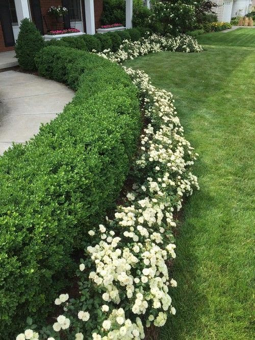 25+ Simple And Small Front Yard Landscaping Ideas (Low ...