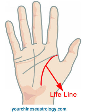 Palm Reading - Life Line