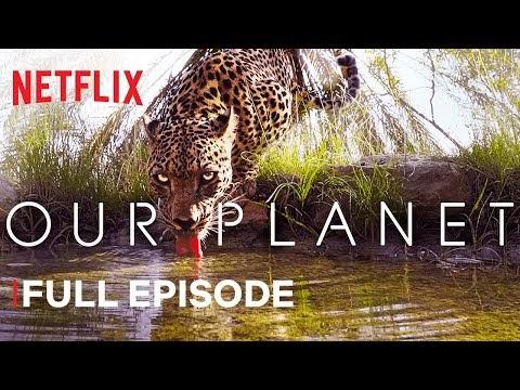 Padang Pasir dan Padang Rumput yang Mempesona (Full Netflix Series)