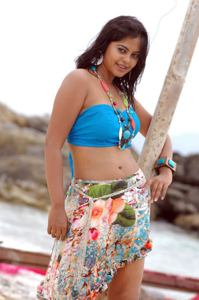 bindu madhavi latest hot photos 1334 Bindu Madhavi Hot Photos