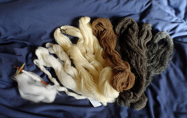 Wovember Wool November Felicity Ford Jamieson and Smith 100% Wool photo Natural Colored Woolly Rainbow