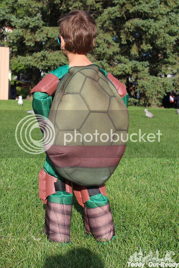 Raphael Costume Back