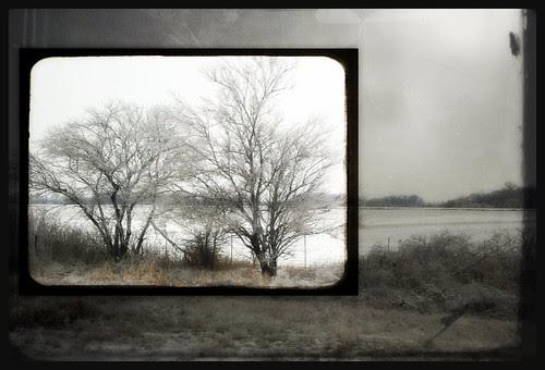 winter drive by n.elle