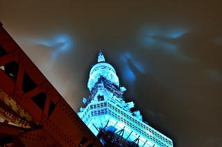 Blue Tokyo Tower 10