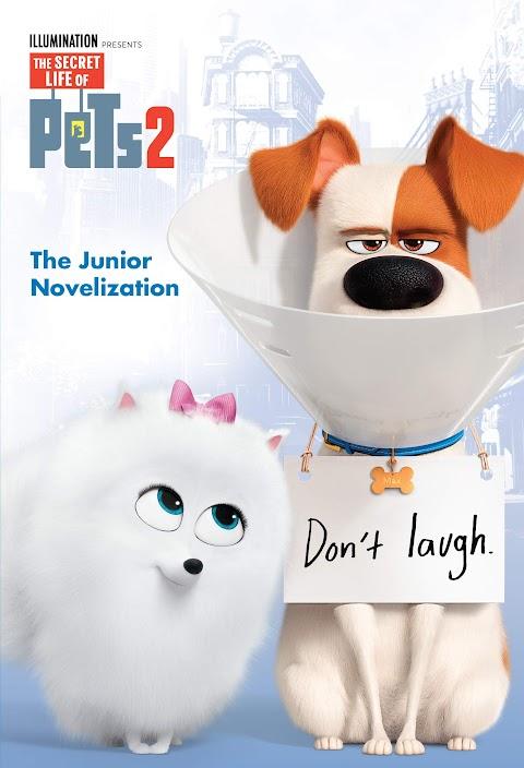 Download The Secret Life of Pets 2 (2019) [WEBRip] 720p