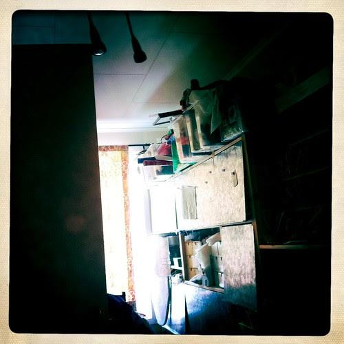 morning view :: morgenlyst - (project365-16feb2011)  jeg elsker hvordan morgenlyset reflekteres i ivar-hyllenes sinkdører!