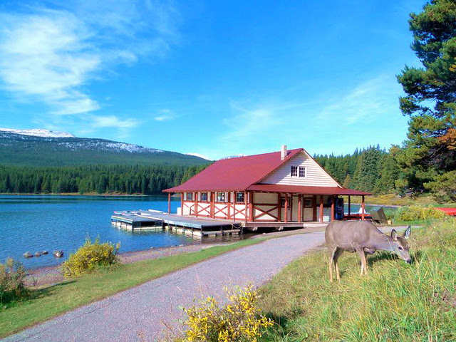 maligne lake boat