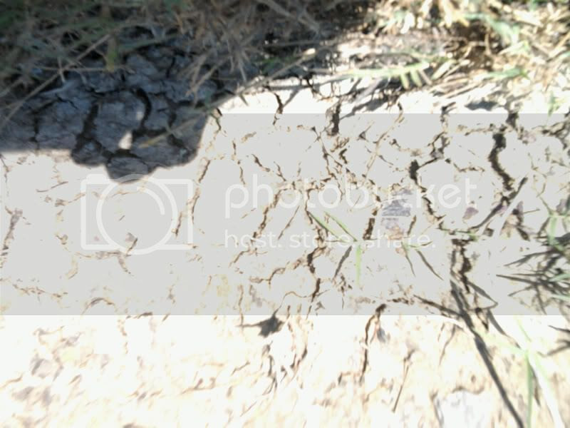 Soil Erosion Pictures, Images and Photos