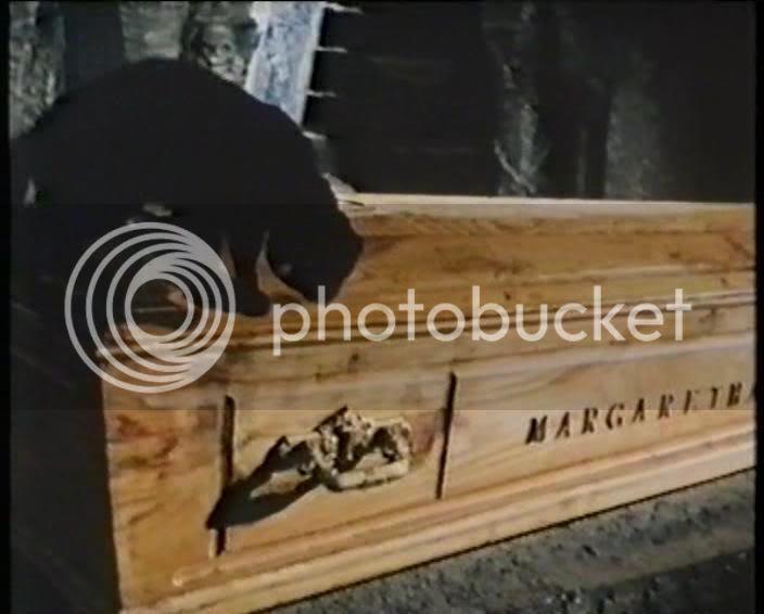 Cat over casket