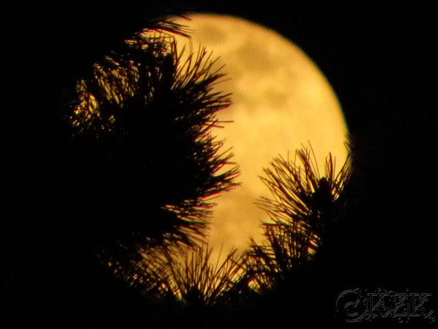 DSCN3317 6 APR 12 full moon