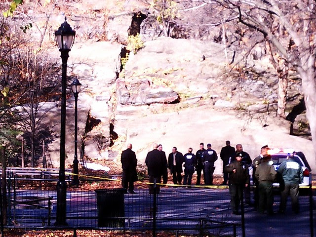 Body Found in Leaves in Harlem Park