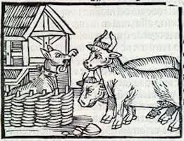 Dog in the manger