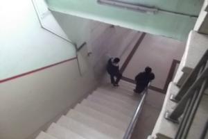 Escalera de Martha Beatriz Roque_dos mujeres policías_foto tomada de internet