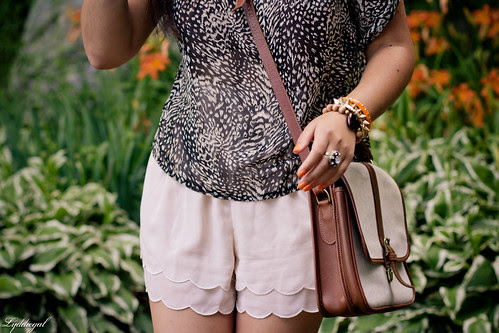 scalloped shorts and leopard-4.jpg