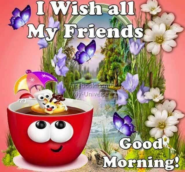 Good Morning My Friends Photo Archidev