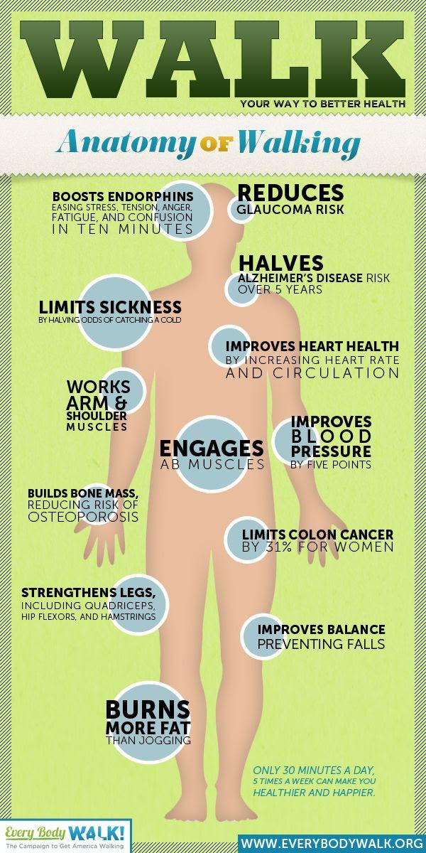 #Health #Infographics - Walk your way to better health. Anatomy of walking #Infografia
