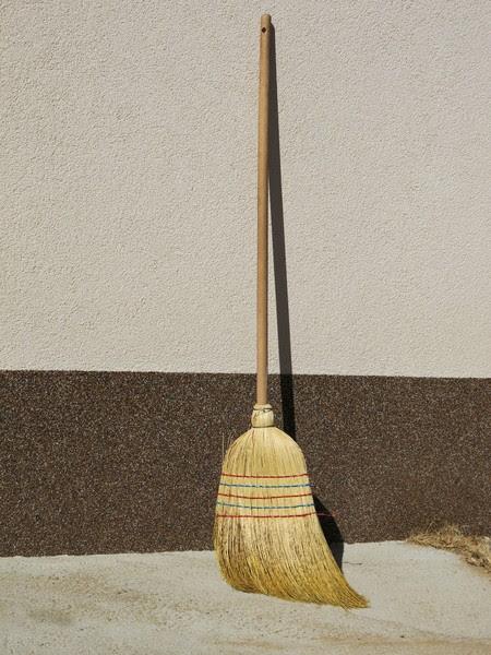 common broom: none