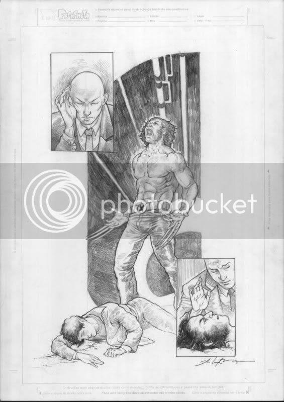 Logan fury by Bressan