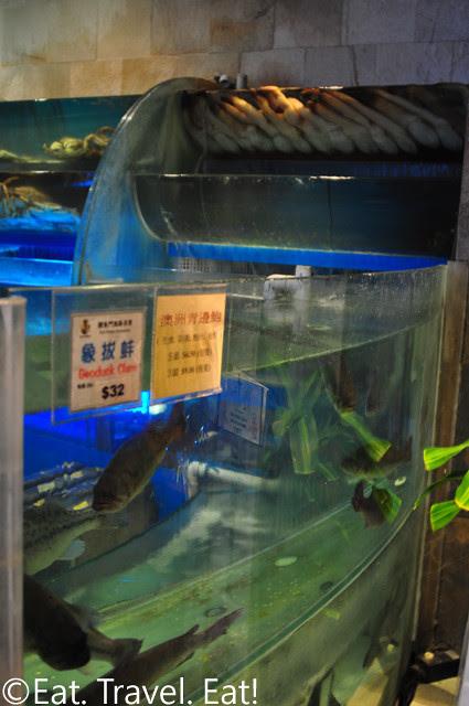 Koi Palace- Daly City, CA: Seafood Tanks