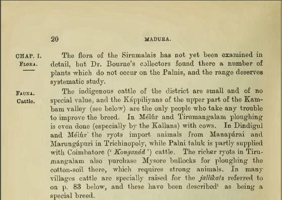 Konganad cattle: Madurai District Gazetteer (1906)