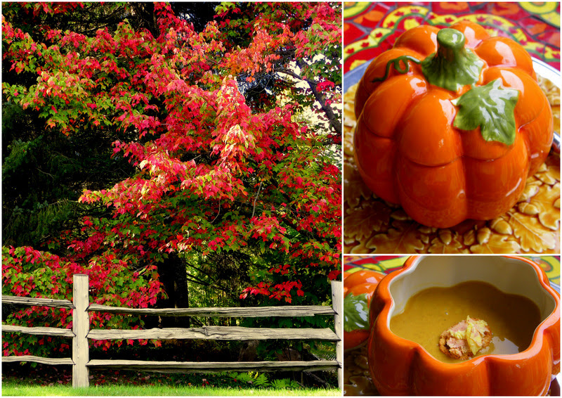 Autumn Flavors