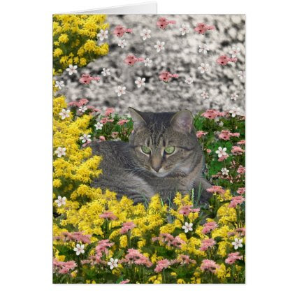 Mimosa the Tiger Cat in Mimosa Flowers Card