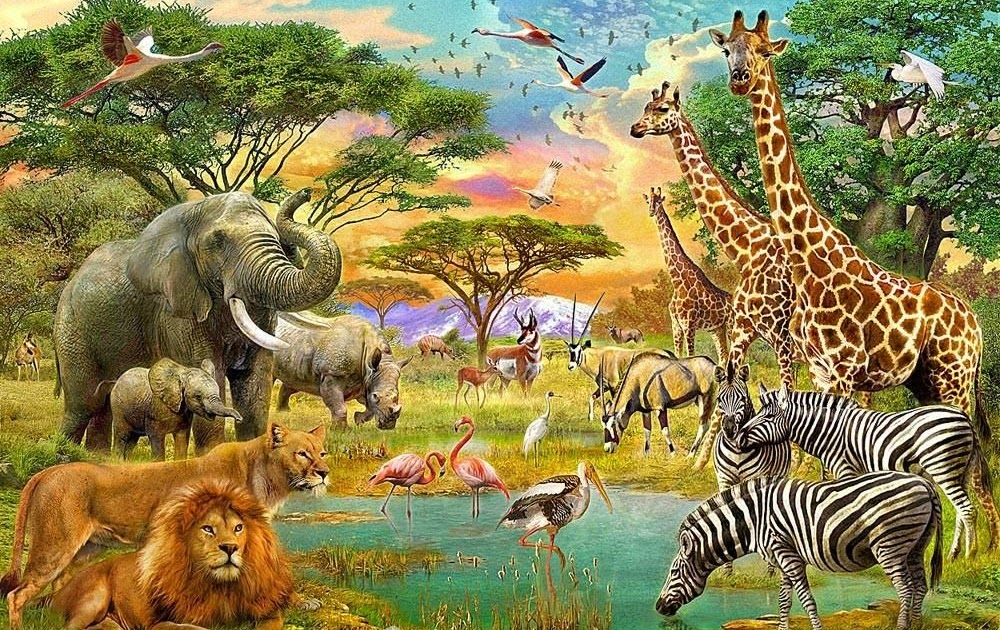 African Savanna African Watering Hole Pets Lovers