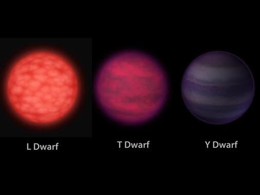 dwarf_stars