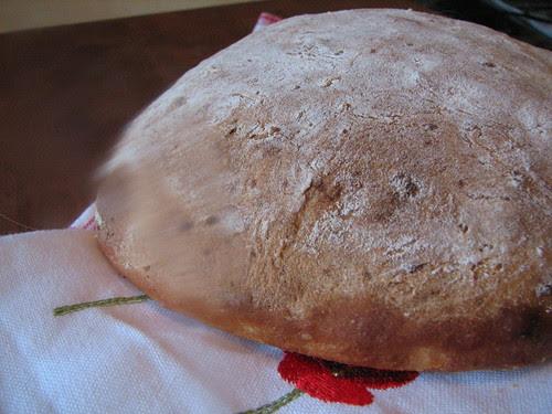 Potato bread - Boule