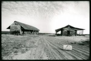 Plantation barn and cabin . Jonestown , Coahoma County , Mis