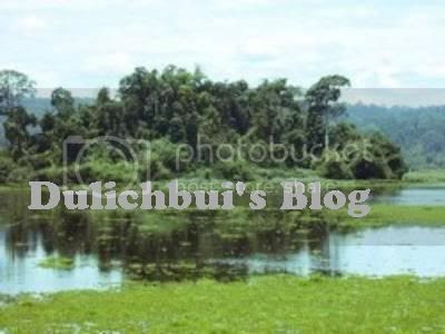 Dulichbui's Blog