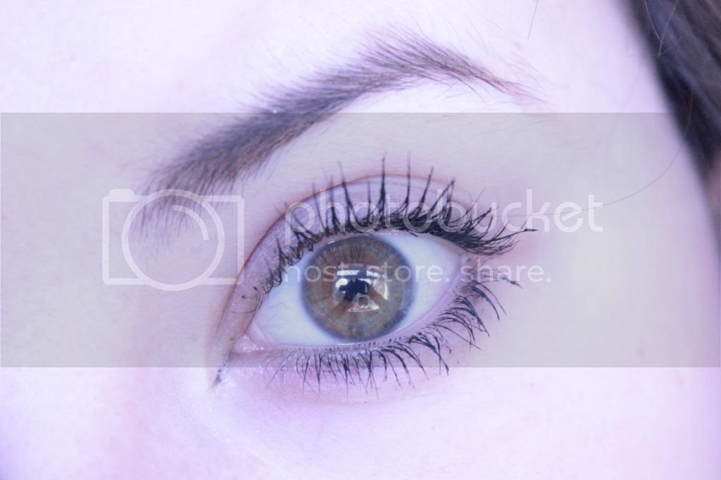 photo Roller Lash Eye.jpg
