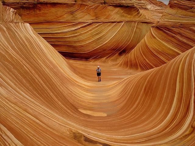 La ola is an Formación de arenisca situada en Una reserva Protegida (Paria Canyon-Vermilion acantilados Wilderness) al norte del Estado de Arizona, en estados unidos.