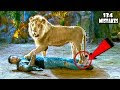 (134 Mistakes) In Total Dhamaal – Plenty Mistakes In Total Dhamaal Full Hindi Movie – Ajay Devgn