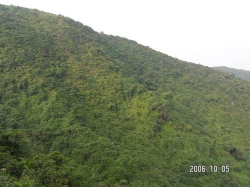 塘朗山公园