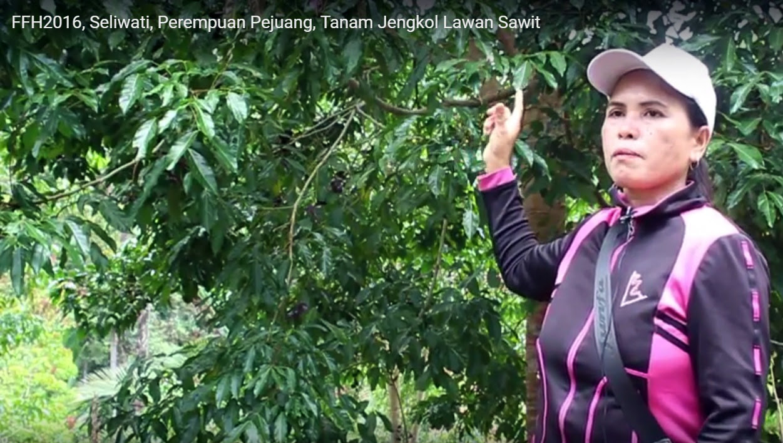 Seliwati, Perempuan Pejuang Tanaman Jengkol untuk Lawan Sawit ...