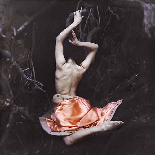 rebirth por brookeshaden