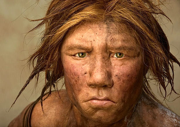 Neanderthal (or modern) man (or woman)