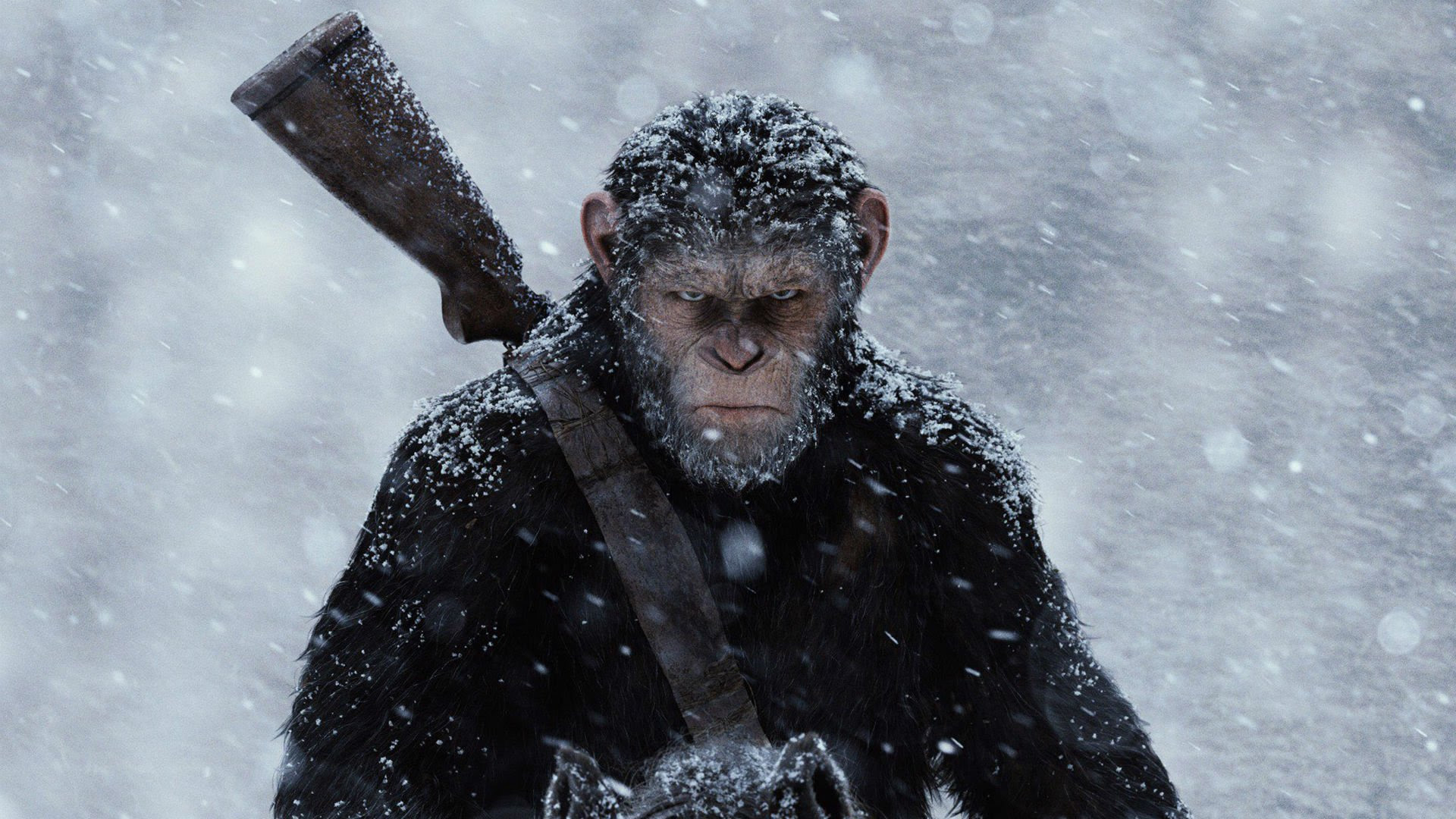 Review: War for the Planet of the Apes screenshot