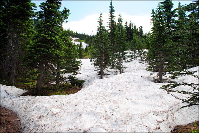 Snow on the trail near McNeil Point