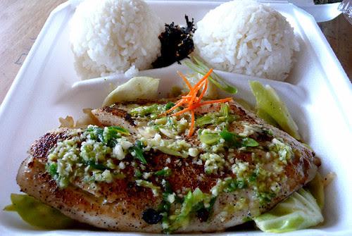 jojo's green fish 1