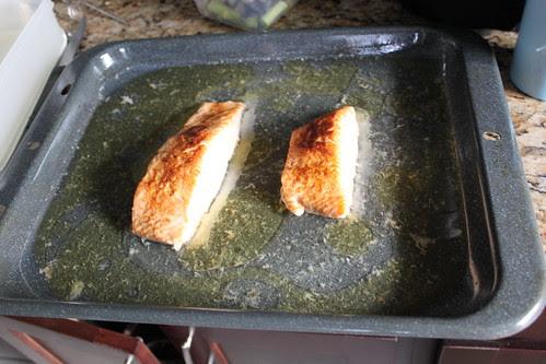 salmon 002
