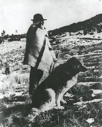Pastor com cão