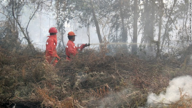 Indonesian firefighters from the Forest Ministry battled forest fires on June 20 in Pekanbaru, the capital of Riau province on Sumatra island.