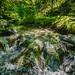 Silberbachtal # 1 - Bach mit Felsen, im Sommer - Creek flows over rocks, summer