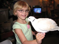 Isabelle and the Dove