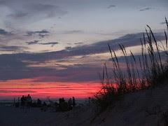sunsetgrass4