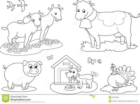 coloring pages farm animal color pages farm animals